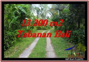 13,200 m2 LAND IN TABANAN BALI FOR SALE TJTB255