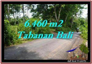 Beautiful PROPERTY LAND FOR SALE IN TABANAN BALI TJTB256