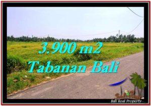 Affordable TABANAN BALI 3,900 m2 LAND FOR SALE TJTB258