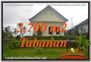 Magnificent LAND FOR SALE IN TABANAN TJTB336