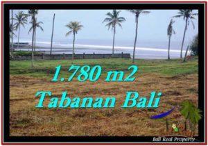 Beautiful 1,780 m2 LAND FOR SALE IN Tabanan Selemadeg TJTB249