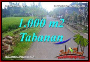FOR SALE LAND IN Tabanan Selemadeg Timur BALI TJTB363