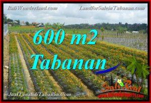 FOR SALE Magnificent PROPERTY LAND IN Tabanan Bedugul BALI TJTB372