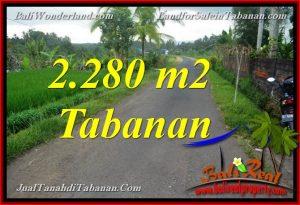 Affordable PROPERTY TABANAN 2,280 m2 LAND FOR SALE TJTB374