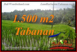 Beautiful PROPERTY LAND SALE IN TABANAN BALI TJTB375