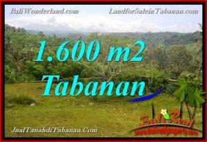 Affordable PROPERTY LAND SALE IN TABANAN TJTB378