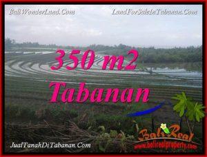 Beautiful PROPERTY TABANAN SELEMADEG LAND FOR SALE TJTB386