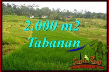 Exotic Property 2,000 m2 Land sale in Tabanan Selemadeg TJTB396