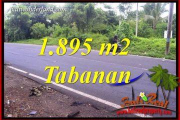 Exotic Property Land in Tabanan Bali for sale TJTB399