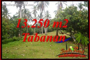 Tabanan Selemadeg Bali Land for sale TJTB403