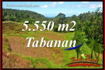 Exotic Property Tabanan Land for sale TJTB405