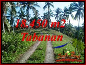 Exotic 18,450 m2 Land sale in Tabanan Bali TJTB410