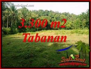 Exotic Property Tabanan Selemadeg 3,300 m2 Land for sale TJTB413