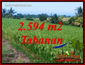 Magnificent Property 2,594 m2 Land sale in Tabanan Selemadeg TJTB414