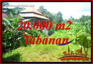 Beautiful Property Land in Tabanan Bali for sale TJTB418
