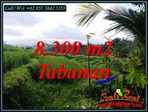 Magnificent TABANAN BALI LAND FOR SALE TJTB501