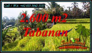 LAND IN TABANAN BALI FOR SALE TJTB499B