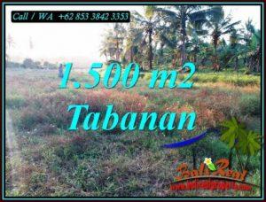Exotic LAND FOR SALE IN SELEMADEG BARAT TJTB497