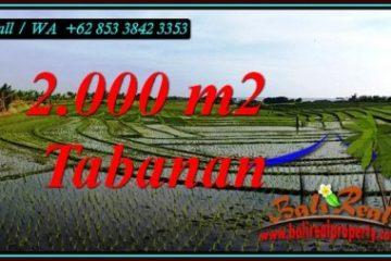 FOR SALE Affordable 2,000 m2 LAND IN KERAMBITAN TABANAN TJTB493