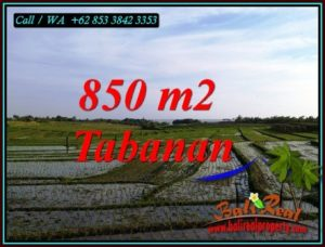 Magnificent PROPERTY 850 m2 LAND SALE IN TABANAN TJTB494