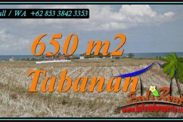 Exotic LAND IN TABANAN BALI FOR SALE TJTB453
