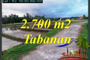 Affordable PROPERTY 2,700 m2 LAND SALE IN SELEMADEG TABANAN BALI TJTB460