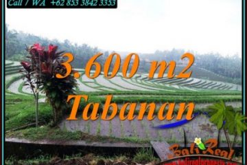 Magnificent PROPERTY 3,600 m2 LAND FOR SALE IN TABANAN TJTB461