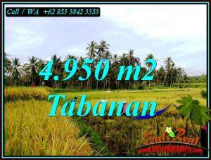 Affordable PROPERTY 4,950 m2 LAND IN TABANAN FOR SALE TJTB464