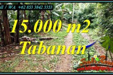 Affordable PROPERTY 15,000 m2 LAND FOR SALE IN TABANAN TJTB469