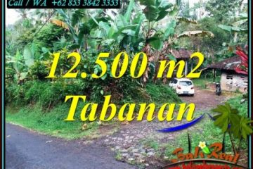 Magnificent 12,000 m2 LAND FOR SALE IN TABANAN TJTB475