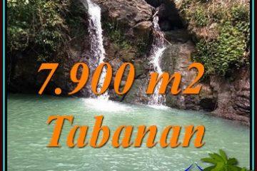 Affordable PROPERTY TABANAN 7,900 m2 LAND FOR SALE TJTB479